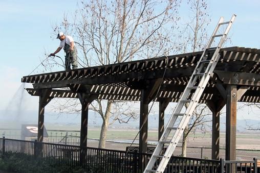Restoring Sonoma Raceway Redwood Pergolas to Like-New