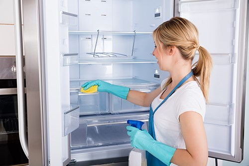 How to Deep Clean Your Fridge and Freezer | 2-10 Blog