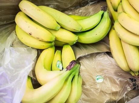 Drug Cartels Still Favour Fruit Shipments for Their Illicit Cargo