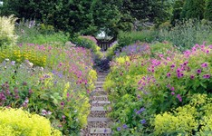 Stepping stone ideas: 11 playful ways to get around your plot