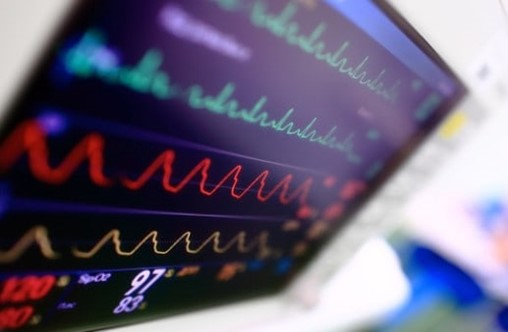 TXA Administration Via IO and IM Routes During Hemorrhagic Shock