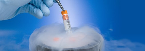 PDA Survey Results: Current State of Cryopreservation