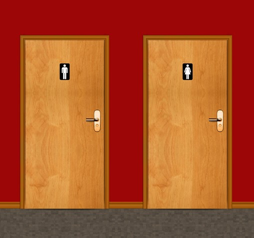 Opening the door to new angles on making loos accessible