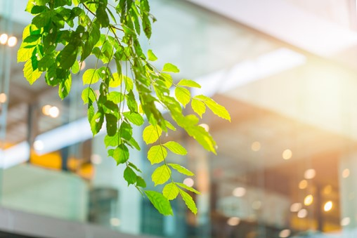 Sustainable building strategy to boost health and wellbeing